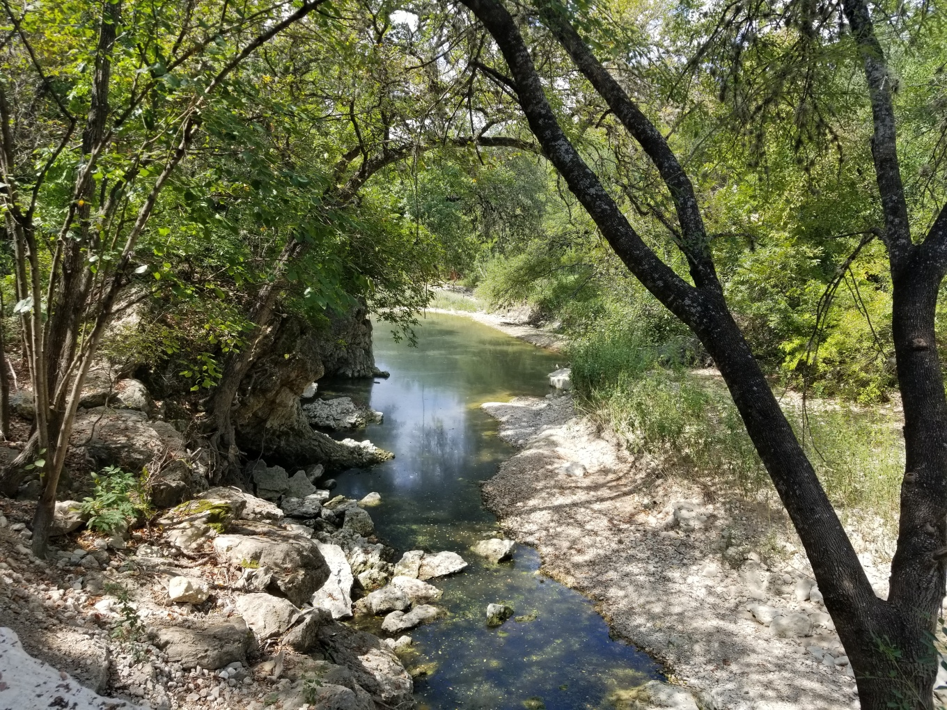 The view of the Shoal Creek from the Shoal Creek Trail in Austin, Texas