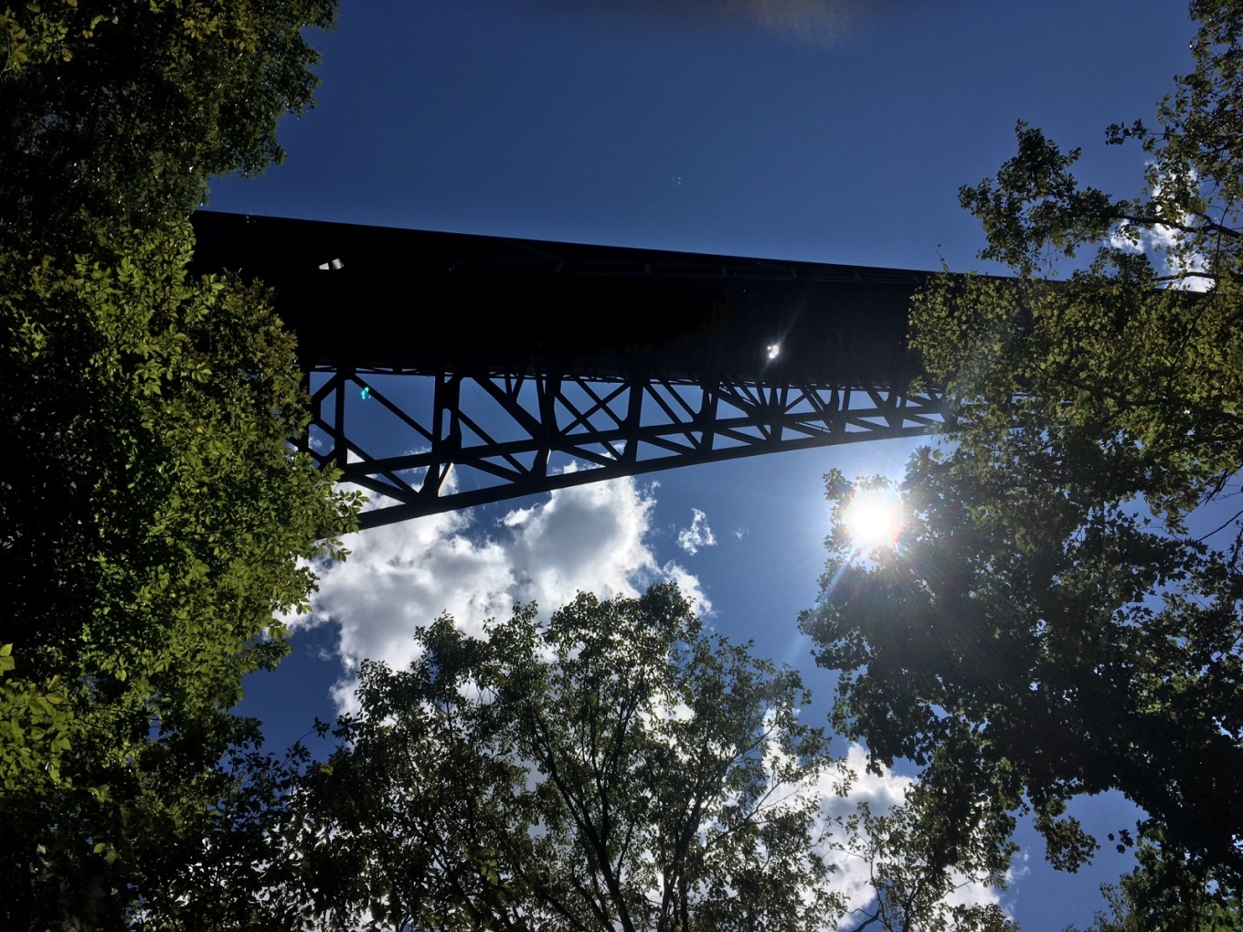 The New River Gorge Bridge as seen from below