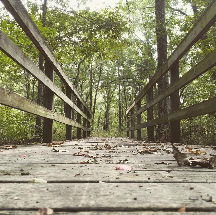 A Bridge on Coyote Run Trail in Cooper Lake State Park in Texas
