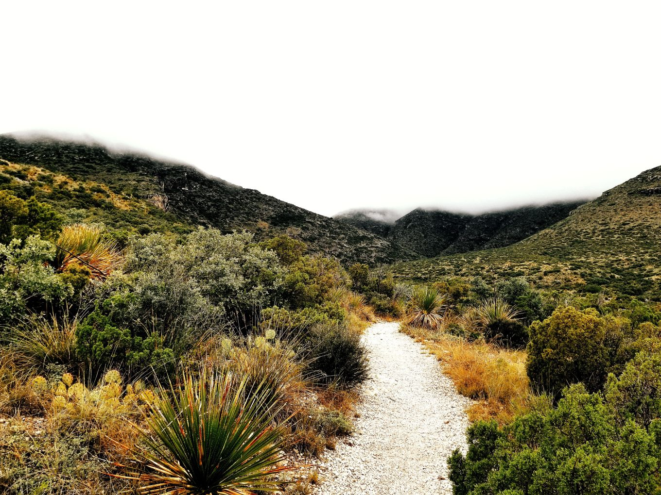 Pinery Trail, Guadalupe Mountains National Park