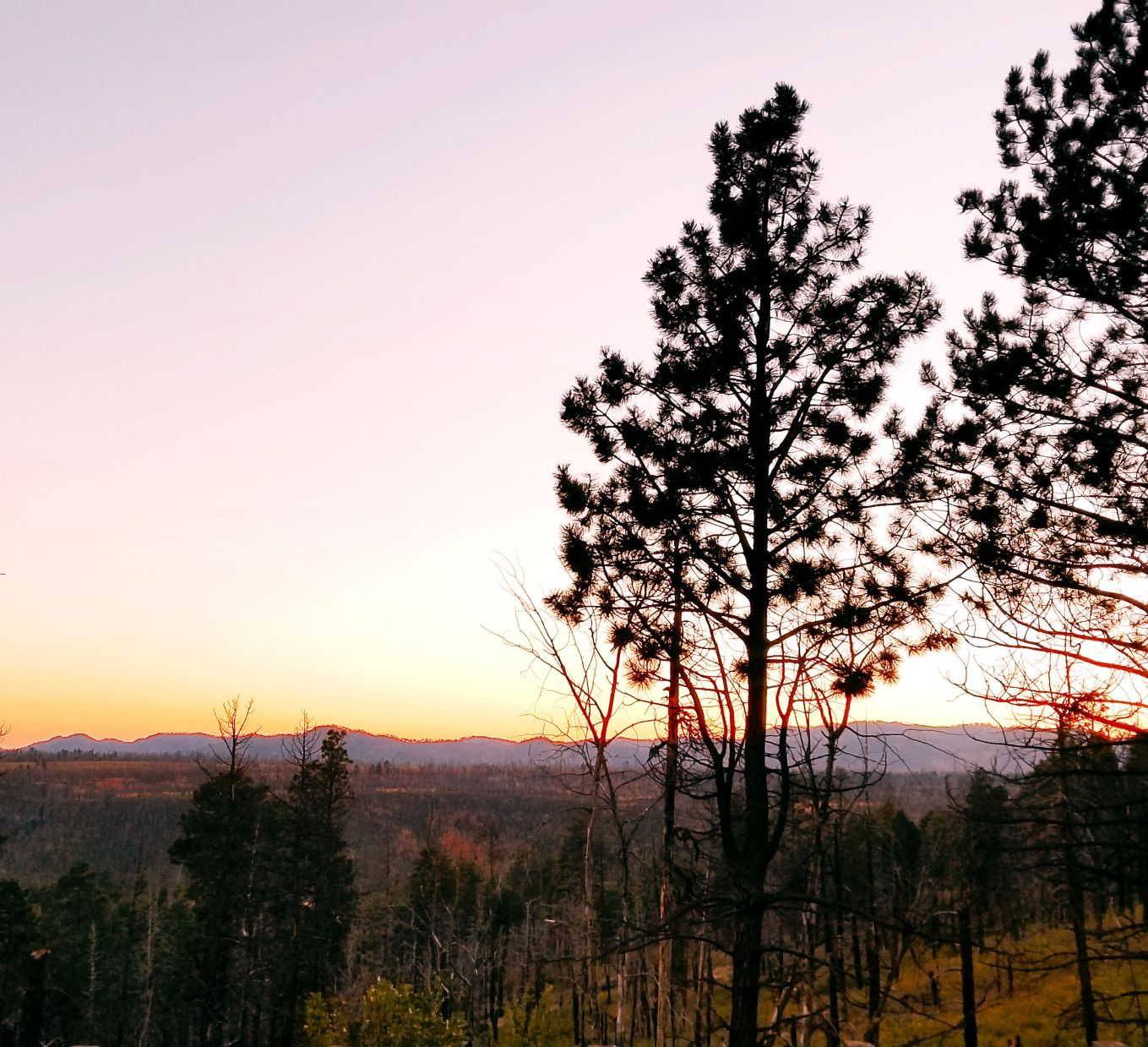 The sun setting over the scorched forests of the Jemez Mountains.