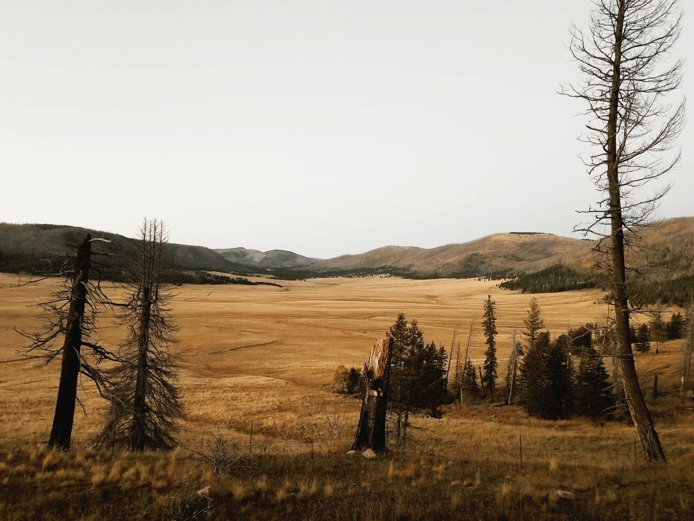 Valles Caldera, NM