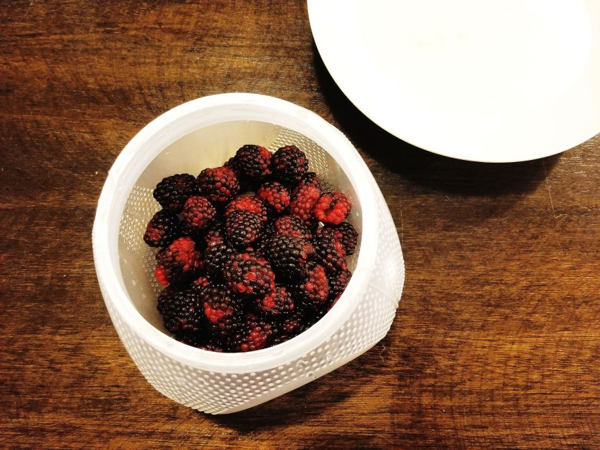 Cleaned blackberries in a plastic vessel