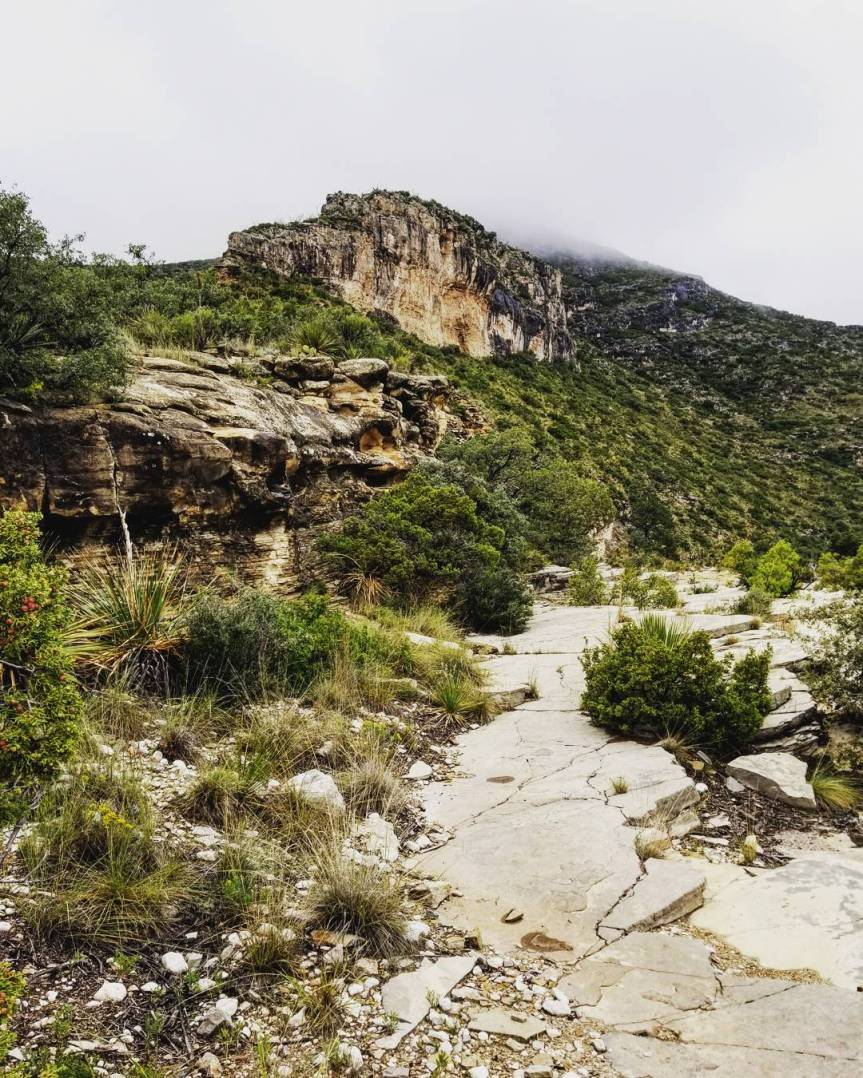McKittrick Canyon, Guadalupe Mountains National Park