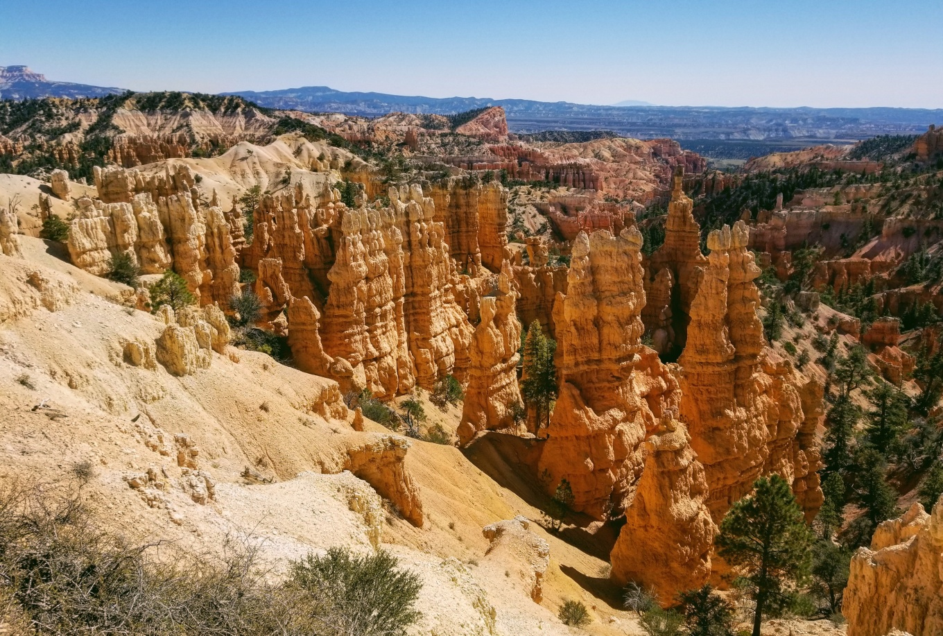 The hoodoos of Fairyland Canyon at Bryce Canyon National Park, UT
