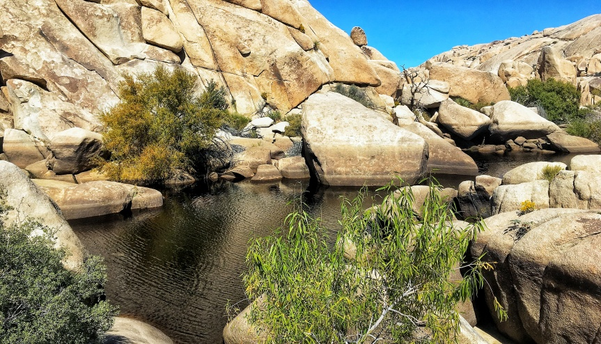 The lake at the Barker Dam in Joshua Tree National Park