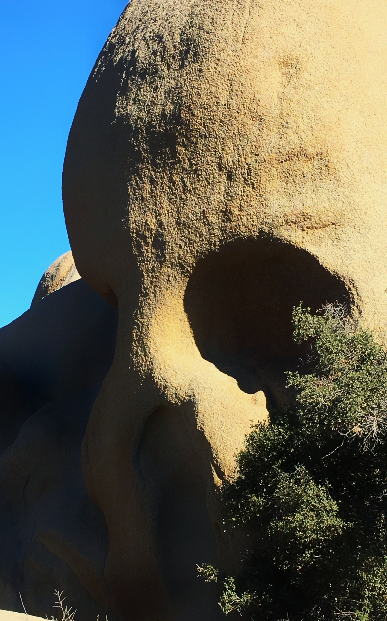 Skull Rock, Joshua Tree National Park