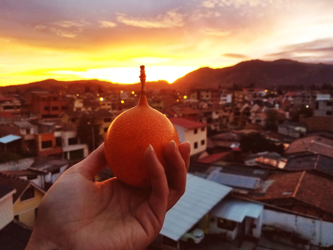 Granadilla And Sunset Cuenca, Ecuador