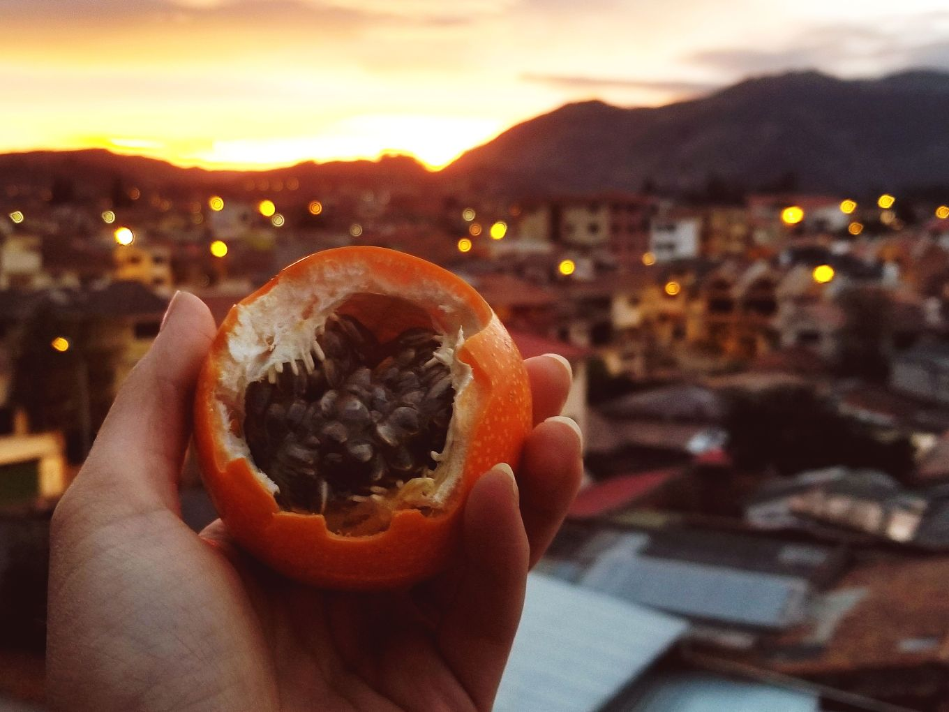Granadilla Seeds And Sunset Cuenca, Ecuador