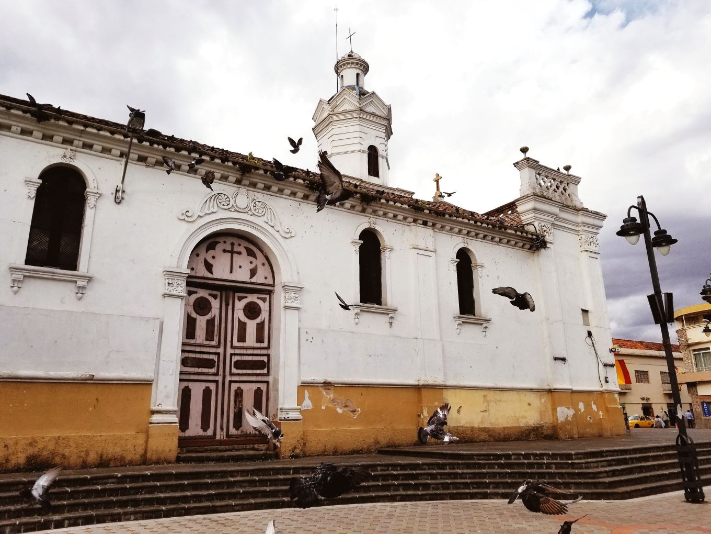 Pigeons Swarming In Plaza De San Sebastian Cuenca, Ecuador