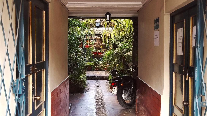 hidden courtyard garden