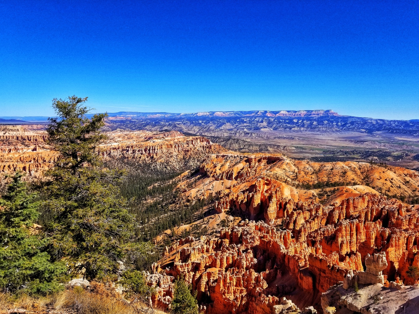 Bryce Canyon and Gran Escalante